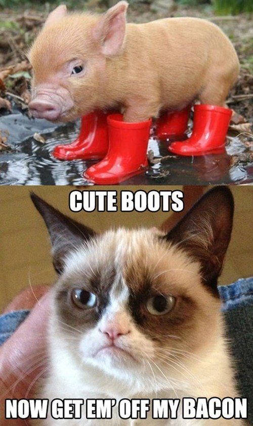 Bacon-with-Boots
